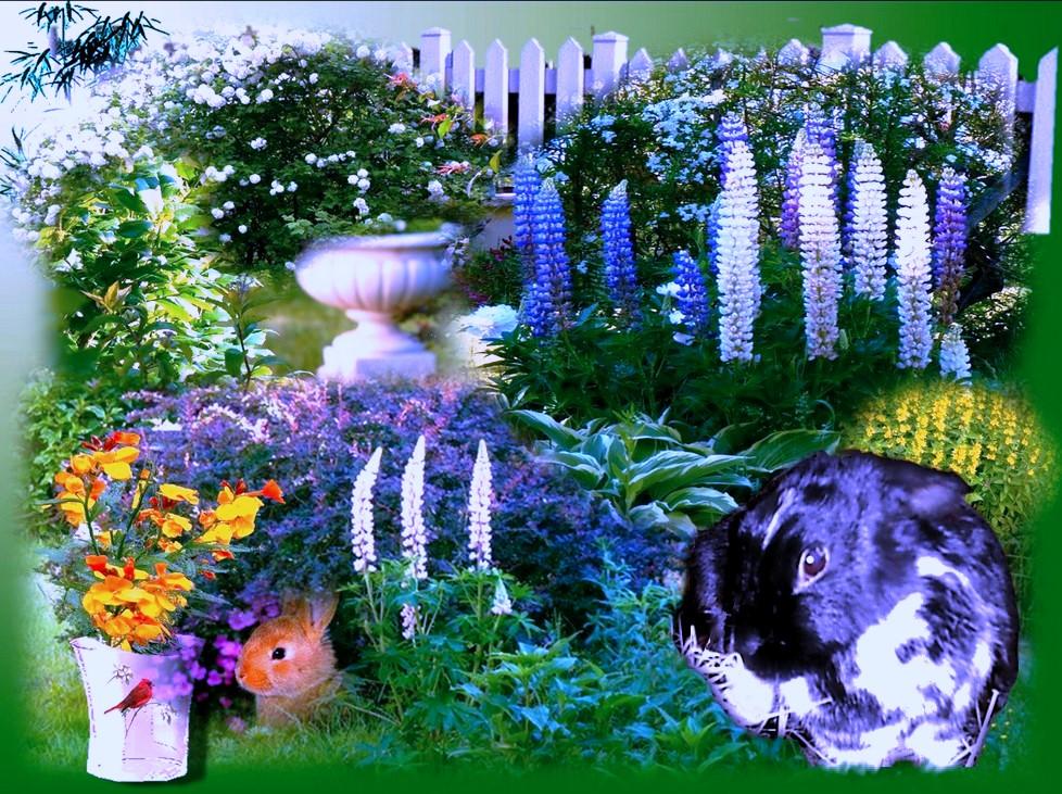 Un beau jardin